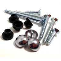 screws with rubber inserts and chrome dome capped arranged for photo
