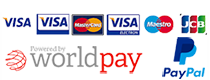 image displaying different forms of online payment supported by our cart